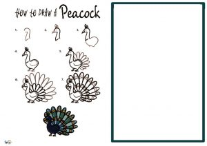 thumbnail of HOW to draw a Peacock NEW