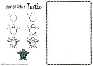 thumbnail of HOW to draw a Turtle NEW