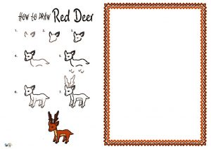 thumbnail of How to Draw Red Deer NEW