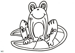 thumbnail of Frog Outline