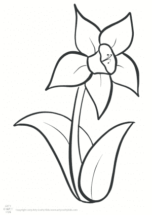 thumbnail of Daffodil Colouring Page