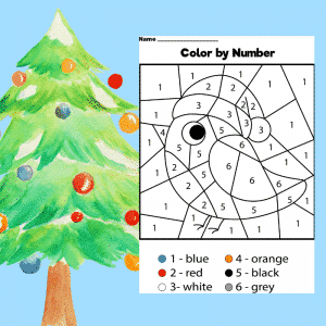 Christmas Robin Colour by Number