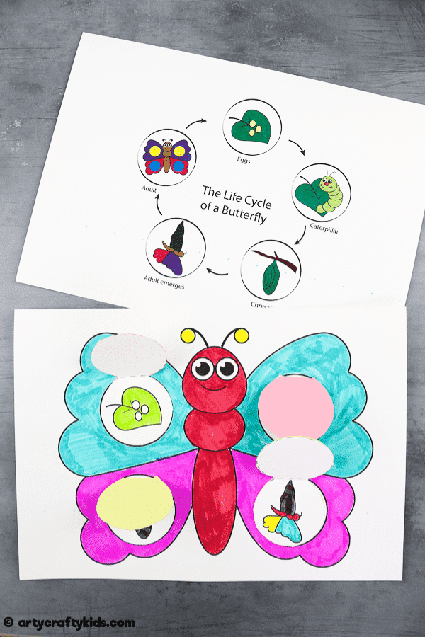 Learn about the Life Cycle of a Butterfly with this cute and easy, color and stick Butterfly Life Cycle Craft for Kids.