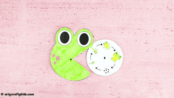 Explore the life cycle of a frog with this fun and engaging frog life cycle spinner craft. A great learning resource for kids