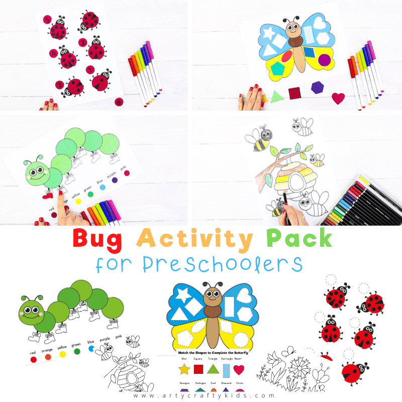 Bug Activity Pack for Preschoolers