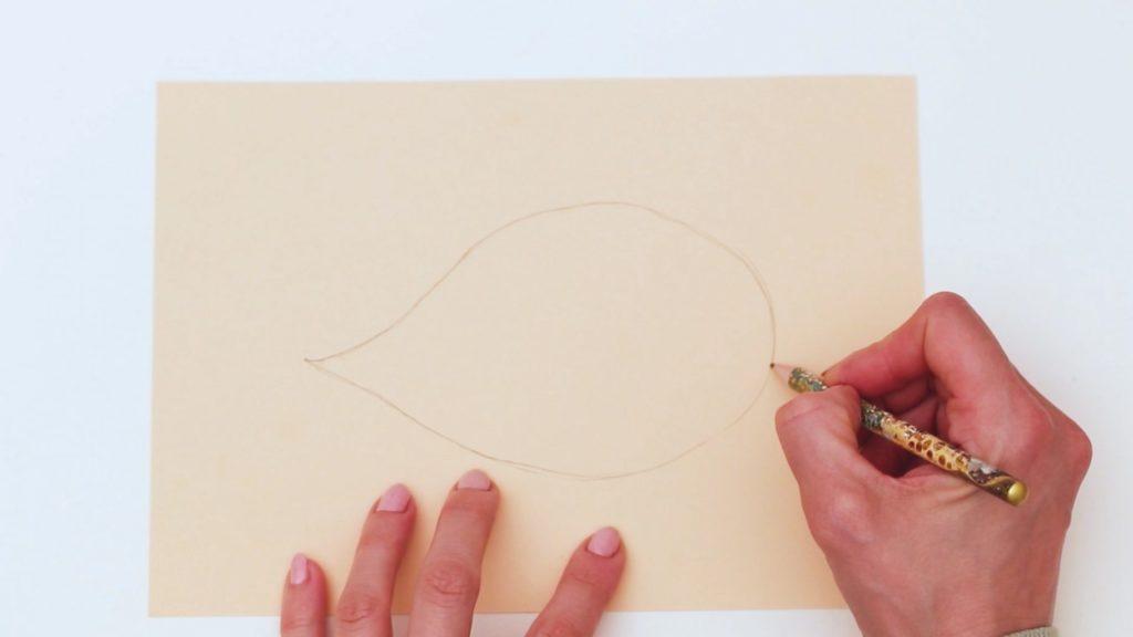 Draw a Horizontal Raindrop Shape