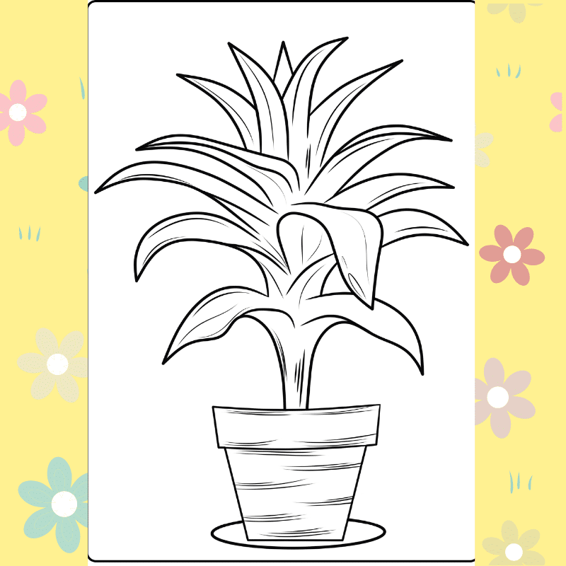 House Plant coloring page