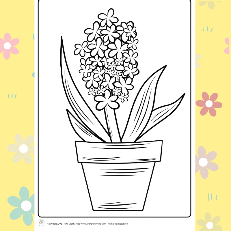 Hyacinth flower coloring page