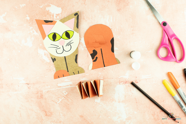 Image showing front and back of cat with a completed accordion paper spring.