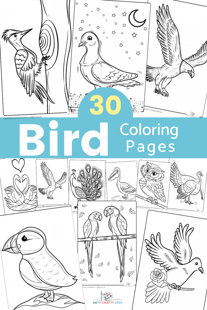 30 Bird Coloring Pages for Kids - A fantastic collection of bird coloring sheets featuring eagles, owls, puffins, peacocks, flamingos and more!