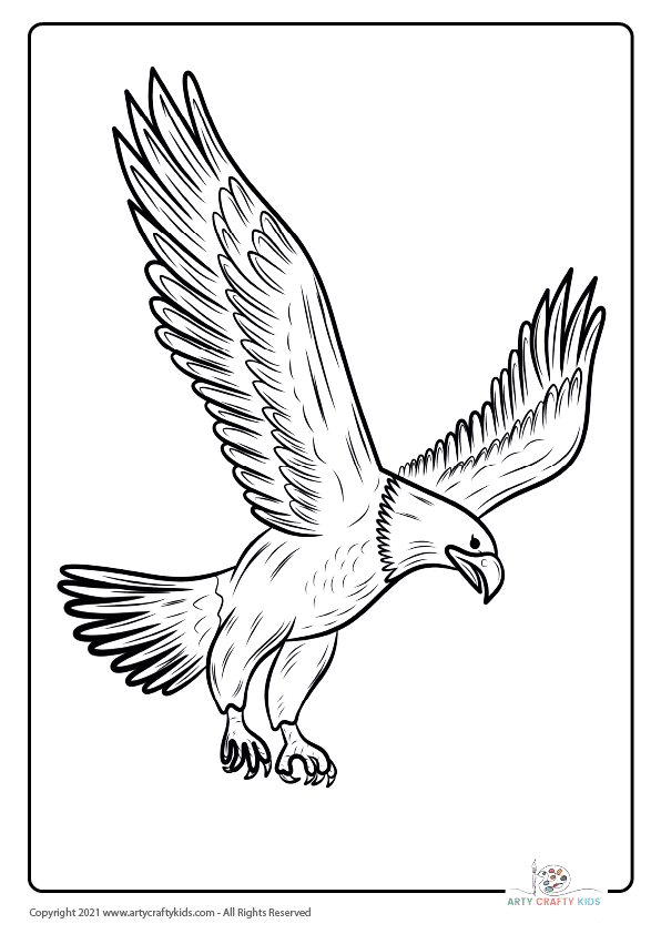 Bird Coloring Pages: From our bird coloring book, this page features an Bald Eagle coloring page.