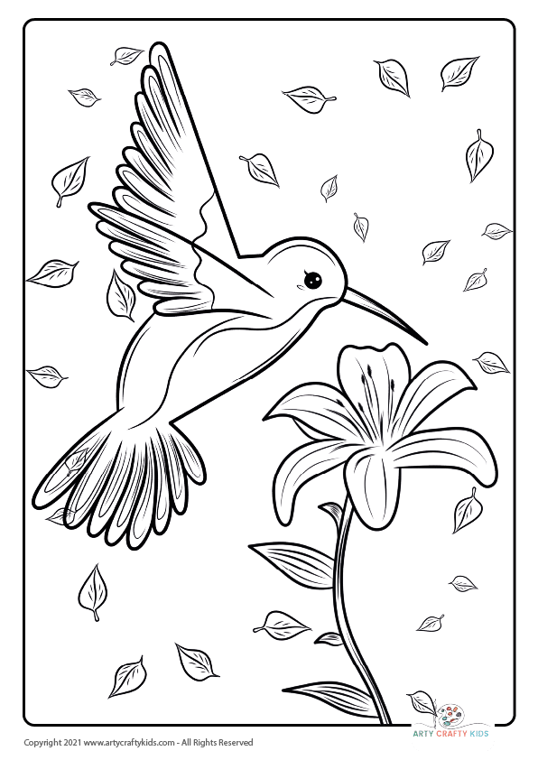 Bird Coloring Pages: From our bird coloring book, this page features a Humming Bird coloring page.