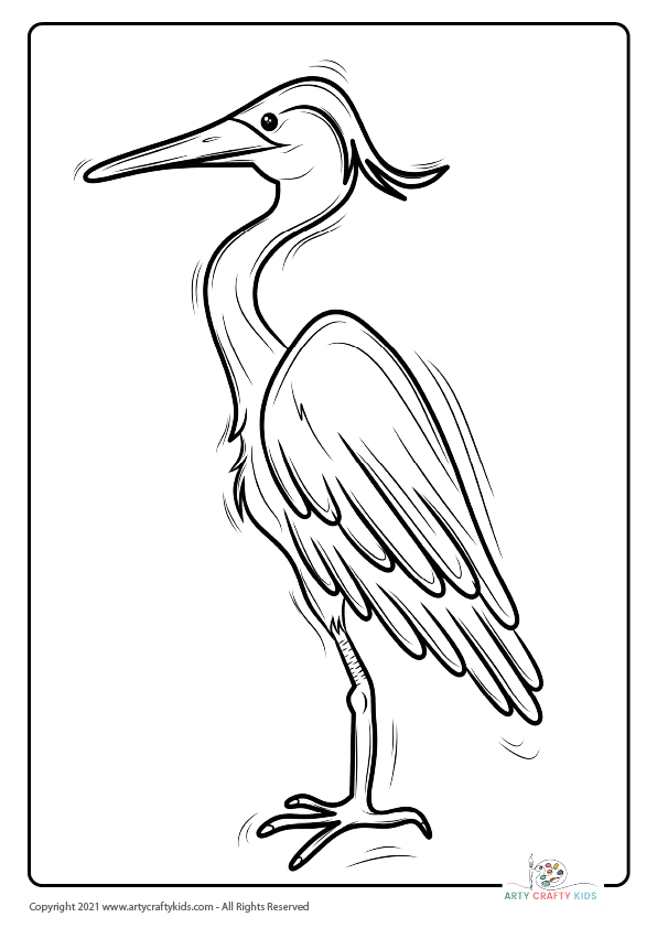 Bird Coloring Pages: From our bird coloring book, this page features a Heron coloring page.