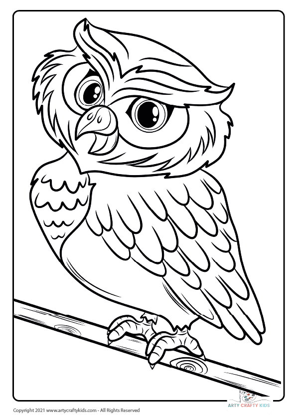 Bird Coloring Pages: From our bird coloring book, this page features a Little Brown Owl coloring page.