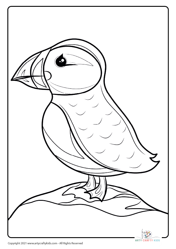 Bird Coloring Pages: From our bird coloring book, this page features a Puffin coloring page.