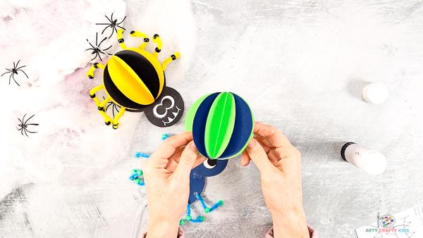 Image montrant les plis de l'araignée dépliés pour créer une boule.